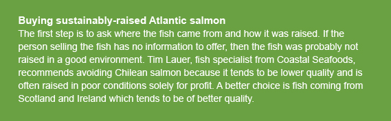article_delidetective_buysustainablesalmon_callout.jpg